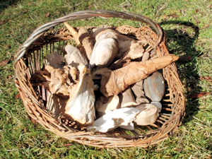 wood and found materials for making baskets