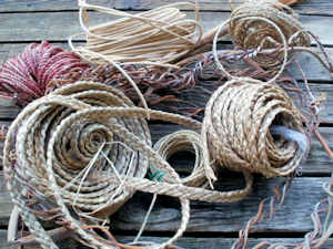 basketry materials
